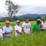 Organizan taller sobre evaluación y clasificación de tierras en San Martín