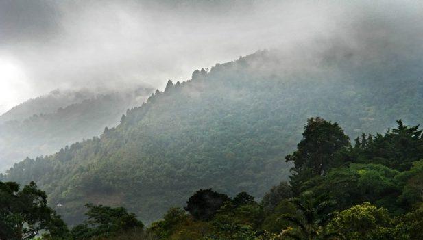 Desde este s bado se inicia el s ptimo friaje en la selva for El tiempo en macanet de la selva