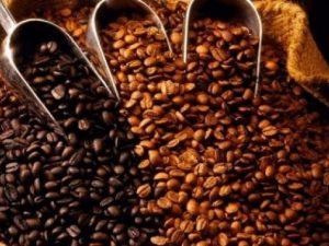 Productores cafeteros agobiados por bajos precios