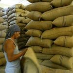 Advierten sobre contracción de exportación cafetera nacional