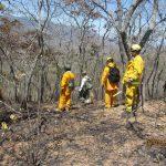 Controlan incendio en reserva nacional de Tumbes