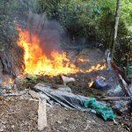 Destruyen dos pozas de elaboración de PBC en el Vraem