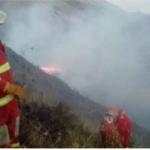 Extinguen incendio forestal en el Cusco