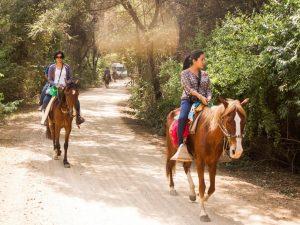 Más de 50 mil peruanos visitaron áreas naturales protegidas en Fiestas Patrias