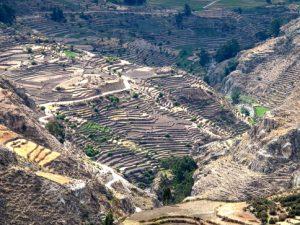 Más del 50% del territorio cuenta con procesos de Zonificación Ecológica y Económica para una adecuada gestión ambiental