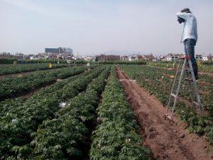 Lanzan iniciativa para asistir a taller sobre detección de riesgo en cultivos