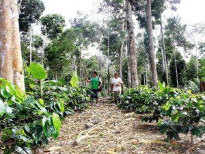 San Martín primera región en el Perú que otorgará contratos de cesión en uso