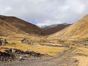 Cusco: Recuperan 140 hectáreas de ecosistema degradado en comunidad de Anccasi