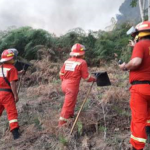 Cusco: Incendio forestal en distrito de Pichari fue extinguido