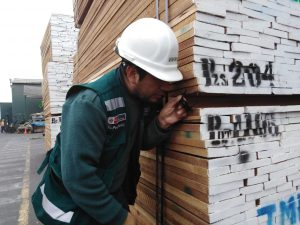 Decomisan 309 metros cúbicos de madera en El Callao