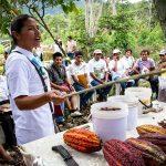Huánuco: Implementan reuniones por módulos para mejorar productividad de cacao