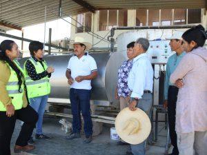 Impulsan fortalecimiento de centros de acopio lechero en Majes