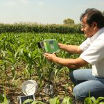 Minagri aplica sensores remotos para medir calidad de suelos agrícolas Foto Minagri