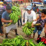 San Martín: Alistan III Feria Agropecuaria y Artesanal en Barranquita