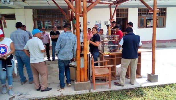 San Martín Impulsan Uso Del Bambú En Construcción De