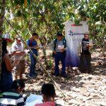 Ucayali: Estudiantes aplicarán conocimientos adquiridos sobre control biológico