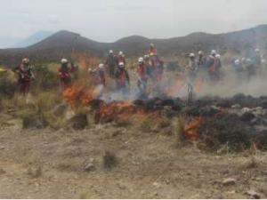 Unos 40 nuevos brigadistas se suman a acciones de prevención y atención de incendios forestales