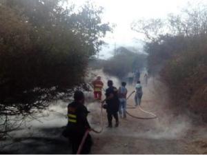 Bomberos extinguen incendio forestal en Lambayeque