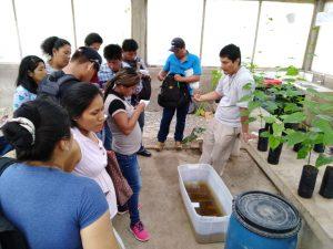 Capacitan a técnicos de proyecto Haku Wiñay de San Martín