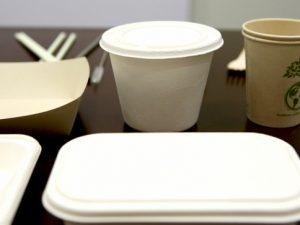 Conoce las empresas que ofrecen productos alternativos al plástico