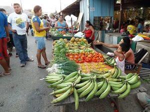 San Martín: Alistan II Feria Agropecuaria en el distrito de El Porvenir Pelejo