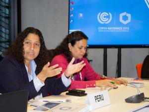 COP24: Perú propone iniciativa sobre consumo responsable del plástico en la Alianza del Pacífico