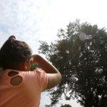 Evite los riesgos de la radiación ultravioleta