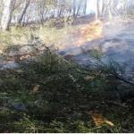 Extinguen incendios forestales en La Libertad, Puno, Junín y Cajamarca