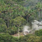 Destruyen tres laboratorios de elaboración de droga en Loreto