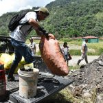 Tingo María: Erradican tonelada caracoles gigantes africanos