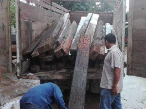 Detienen actividades de tala ilegal en Bosque de Protección Alto Mayo
