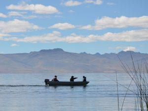 Reserva Nacional de Junín: avanza remediación de suelos contaminados