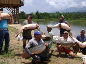 Capacitación en manejo de negocios acuícolas en Ucayali