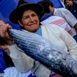"""""""Mi Pescadería"""" llega a Junín con pescados a precios económicos"""