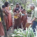 Pasco: Usuario de Pensión 65 crea orquideario y rescata 170 especies de esta flor