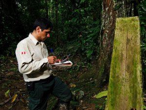 Abren convocatoria para ser guardaparques voluntarios en 10 áreas naturales protegidas