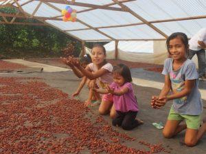 Agricultura regional se beneficiará con planes de negocios de Procompite