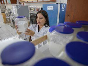 China y Japón ofrecen becas a investigadores peruanos en Ciencias y Humanidades