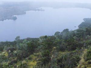 Colombia: Conservación de los páramos, tarea que involucra a toda la sociedad