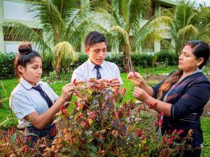Escuelas del Vraem ganan premio ambiental