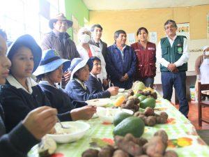 Huancayo: Impulsan lucha contra la desnutrición y la anemia
