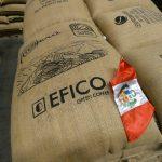 """Marca """"Cafés del Perú"""" arriba por primera vez al mercado internacional"""