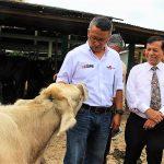 Ministerio de la Producción apoyará reflotamiento de la granja ganadera de Calzada