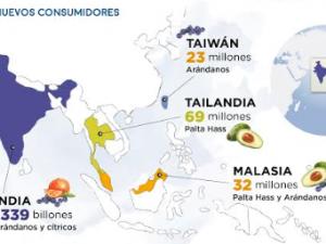 Perú exportará arándanos a Taiwán