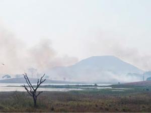 Brasil: La Amazonía se está secando
