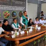 Goresam lanzó proyecto de café para mejorar productividad y competitividad