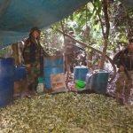 Destruyen poza de maceración de coca en Madre de Dios