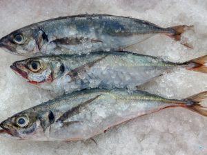 Huánuco: Venderán pescado a precios de promoción en Hermilio Valdizán