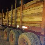 Madre de Dios: Inmovilizan madera que pasó puesto de control sin guías