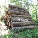 Transfieren madera para centro juvenil de diagnóstico y rehabilitación en Pucallpa